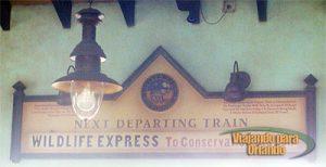 Wildlife Express Train