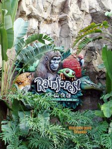 Rainforest Cafe – Animal Kingdom
