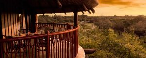 Disney's Animal Kingdom Villas – Jambo House