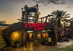 A montanha-russa Cobra's Curse será inaugurada no dia 17 de junho no Busch Gardens