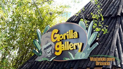 Gorilla Gallery