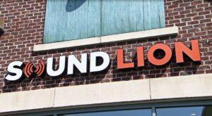 Sound Lion