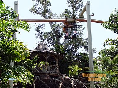 Pteranodon Flyers