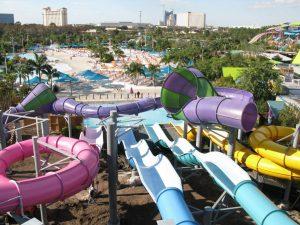 O parque Aquatica Orlando está completando 10 anos
