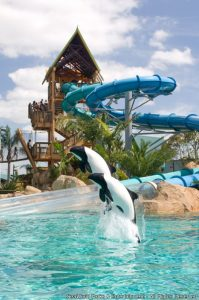 Aquatica Orlando é reconhecido pelo TravelChannel.com