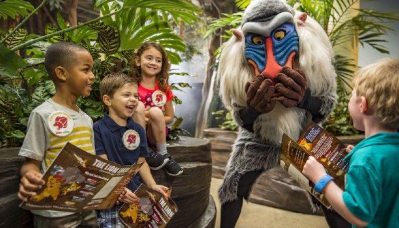 Lion Guard Adventure é a nova aventura do parque Disney's Animal Kingdom