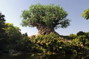 A Disney irá transmitir ao vivo o início das festividades pelo aniversário de 20 anos do parque Disney's Animal Kingdom