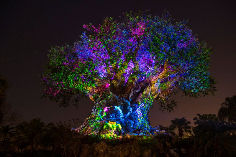 Novidades no parque Disney's Animal Kingdom a partir do Memorial Day