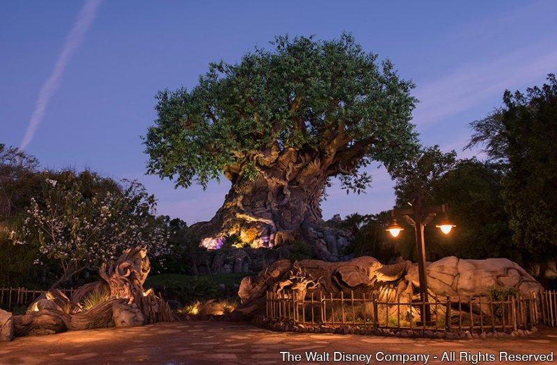 Conheça os novos detalhes criados pelos Imagineiros para a Tree of Life