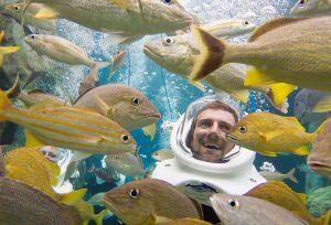 Visitantes que nadam com os peixes do Discovery Cove ajudam a salvar os arrecifes