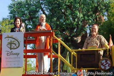 O que o Dia da Terra, o Disney's Animal Kingdom e o Disney Worldwide Conservation Fund tem em comum