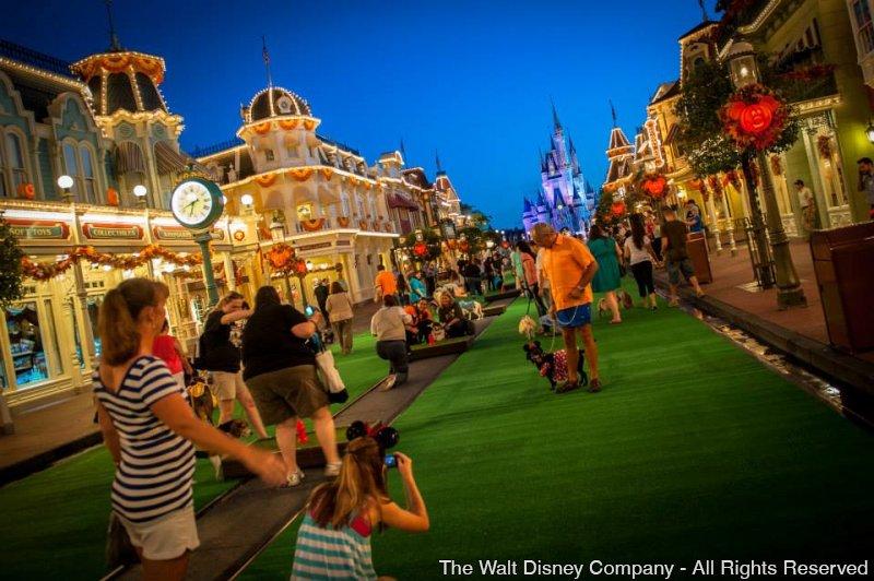Foi realizado o evento Disney Side Dog's Day no parque Magic Kingdom