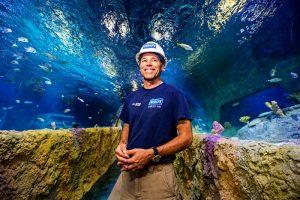 O primeiro grupo de peixes já chegou ao Sea Life Orlando Aquarium