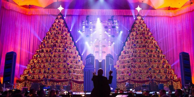 Conheça o espetáculo The Singing Christmas Trees