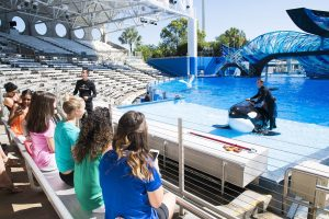 Informação sobre funcionamento de Parques SeaWorld na Flórida