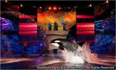 Está aberta a temporada de verão do Busch Gardens e SeaWorld