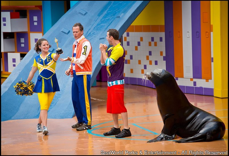 Inaugurado o novo espetáculo Clyde & Seamore's Sea Lion High no SeaWorld Orlando