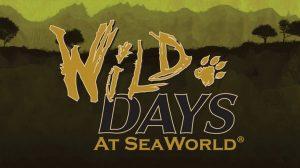 Wild Days é o novo evento do SeaWorld Orlando