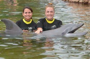 A equipe do Projeto Tamar visitou os parques do SeaWorld Parks & Entertainment na Flórida
