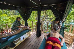 Discovery Cove está oferecendo novas experiências VIP