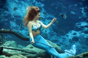 Weeki Wachee Mermaids irão se apresentar no SEA LIFE Orlando
