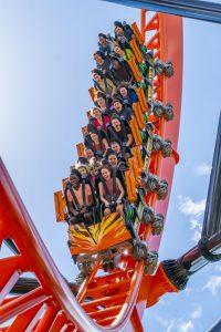 Tigris será inaugurada amanhã no Busch Gardens