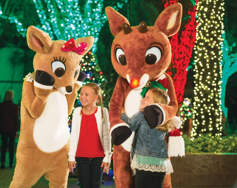 Rudolph's Christmas Town