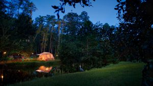 Disney's Fort Wilderness Resort & Campground inicia a primavera com oferta de acampamento