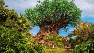 Mais informações sobre o passeio guiado A Path Less Traveled Tour do Disney's Animal Kingdom